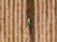 Serbien, Vojvodina, Mähdrescher auf einem Weizen, Luftaufnahme — Stockfoto