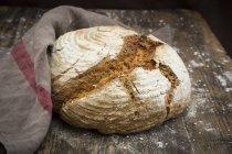 Pão de centeio caseiro sourgough — Fotografia de Stock