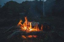 Noruega, Lofoten, Moskenesoy, Cocina de alimentos en el fuego del campamento - foto de stock