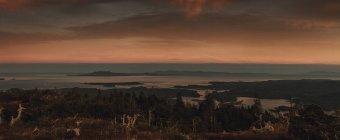 Canada, Colombie-Britannique, île Kaien, Skeena-Queen Charlotte A, mont Hays, Prince Rupert en soirée — Photo de stock