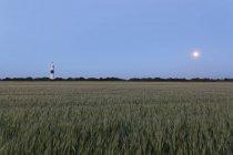Allemagne, Frisie du Nord, Sylt, phare de Kampen — Photo de stock