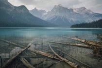 Канада, Британская Колумбия, Columbia-Shuswap A, Emerald Lake Trail, Майкл Пик, Национальный парк Йо, Роки Маунтин — стоковое фото