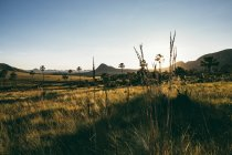 Brasil, Alto Paraíso de Goias, Paisaje al amanecer - foto de stock