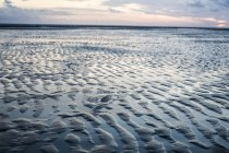 France, Normandy, Portbail, Contentin, beach at low tide at sunset — Stock Photo