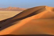 Oman, Dhofar, sand dunes in the Rub al Khali desert — стокове фото