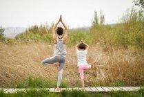 Vista trasera de la madre y la hija haciendo yoga en el paseo marítimo - foto de stock