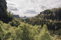 Allemagne, Saxe, Suisse saxonne, Montagnes de grès Elbe — Photo de stock