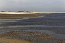 Germania, Frisia Settentrionale, Sylt, Wadden mare vicino a Lista — Foto stock