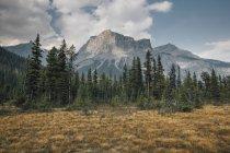 Canadá, Columbia Británica, Columbia-Shuswap A, Montañas Rocosas, Michael Peak, Parque Nacional Yoho - foto de stock