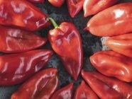 Pimientos rojos frescos dispuestos en una bandeja para hornear - foto de stock