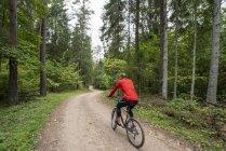 Спортсмен в красной куртке на горном велосипеде в лесу — стоковое фото