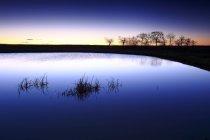 Espagne, Castilla y Leon, Province de Zamora, Réserve naturelle de Lagunas de Villafafila, lac au coucher du soleil — Photo de stock
