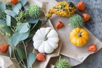 Осенние украшения, декоративные тыквы — стоковое фото