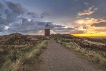 Germany, Schleswig-Holstein, Sylt, Kampen, cross light in dunes at sunset — Stock Photo