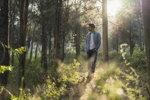 Young man standing in forest, against the sun — Stock Photo