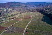 Alemanha, Baden-Wurttemberg, vale de REMS, vinhedos no vale de Gundelsbach — Fotografia de Stock