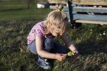 Девушка собирает цветы на лугу — стоковое фото