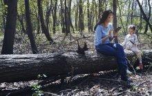 Мать и дочь в парке, сидят на стволе дерева, используя смартфон — стоковое фото