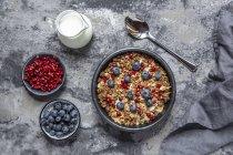 Schüssel Müsli mit Blaubeeren und Granatapfel — Stockfoto