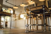 Toy robot leashed to table leg in a coffee shop — Stock Photo