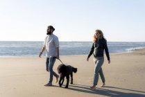 Молодая пара, гуляющая с собакой на песчаном пляже — стоковое фото