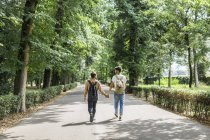 Vista trasera de joven pareja gay con mochilas caminando mano a mano en el camino en el parque - foto de stock