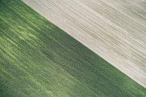 США, кукурузное поле и свежесобранное поле в Западной Небраске — стоковое фото
