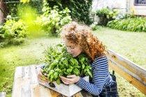 Портрет молодой женщины, нюхающей зеленые свежие травы в коробке на открытом воздухе — стоковое фото