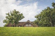 Alemania, Schleswig-Holstein, Sylt, Keitum, casa con techo de paja behing dyke - foto de stock