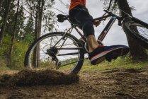 Крупный план катания на горных велосипедах в лесу — стоковое фото