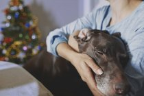 Woman hugging old dog at Christma time — Stock Photo