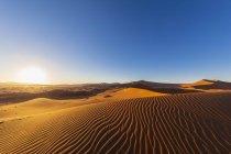Afrique, Namibie, désert namibien, parc national de Naukluft, dunes de sable contre le soleil du matin — Photo de stock