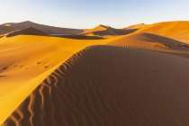 Africa, Namibia, Namib desert, Naukluft National Park, Dead Vlei and sand dune 'Big Daddy' - foto de stock