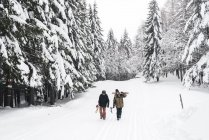 Italy, Modena, Cimone, couple with skiers and snowboard walking in winter forest — Stock Photo