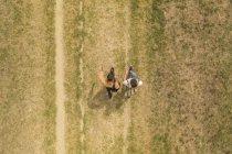 Joven pareja gay con mochilas caminando lado a lado, vista superior - foto de stock