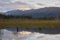 USA, Alaska, Denali Road in autumn — Stock Photo