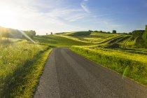 Autriche, Innviertel, route de campagne vide et champs contre le soleil — Photo de stock