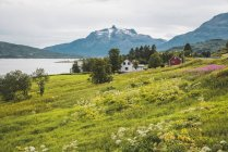 Northern Norway, Lapland, Landscape at a fjord — Stockfoto
