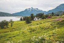 Norte de Noruega, Laponia, Paisaje en un fiordo - foto de stock