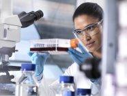 Recherche biomédicale, chercheuse observant des cellules souches se développant dans un pot de culture au cours d'une expérience en laboratoire — Photo de stock