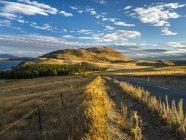 New Zealand, South Island, Canterbury Region, sunset near Lake Tekapo — Stockfoto