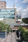 Germany, Duisburg, Urban rooftop garden — Stock Photo