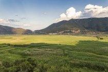 Grèce, Péloponnaise, Corinthia, Stymfalia, Ancien plateau, Lac Stymphalia — Photo de stock