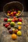 Tomates da herança na madeira — Fotografia de Stock