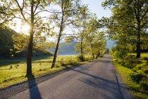 Албания, Карк Корча, Колонье, пустая проселочная дорога — стоковое фото