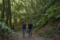 Пара ходить рука об руку через лес — стоковое фото
