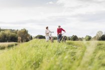 Senior couple pushing bicycles in rural landscape — Stock Photo