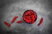 Schüssel mit roten Johannisbeeren auf grauem Hintergrund — Stockfoto