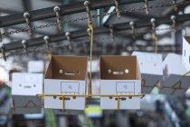 Primer plano de cajas de cartón en una fábrica - foto de stock