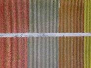 USA, washington state, skagit Valley, Luftaufnahme von Tulpenfeldern — Stockfoto